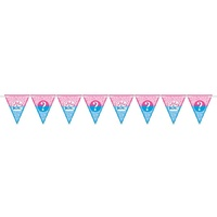 Gender Reveal Girl or Boy Pennant Banner