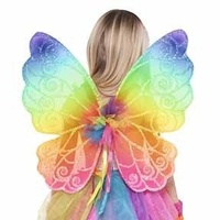 Fairies Rainbow Fairy Wings